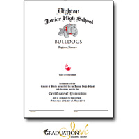 "Custom Diploma and Certificate Design (8 1/2"" x 11"")"